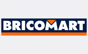 Logo bricomart